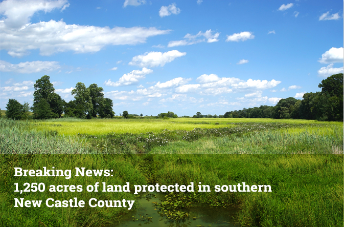 Breaking News: 1,250 acres of land protected in southern New Castle County