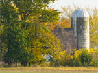 Roberts-Farm-Autumn